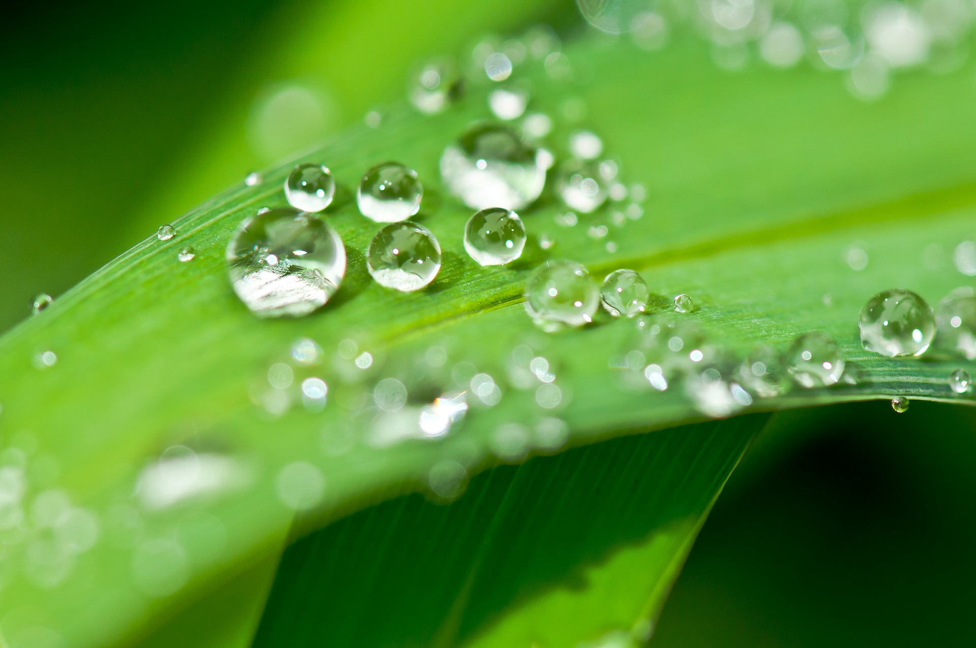 Ympäristösuojelulaki